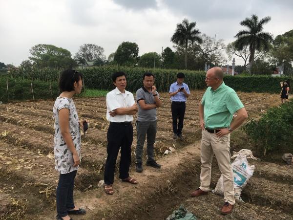 Curriculum development Vietnam