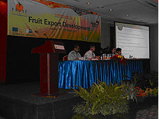 Indonesian fruit export