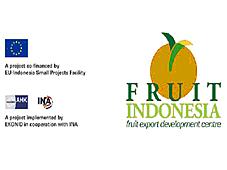 Indonesian fruit export